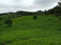 Grüne Natur-Hügel-Panorama-Ansicht Lizenzfreie Stockfotografie
