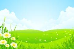 Grüne Natur-Landschaft lizenzfreie abbildung
