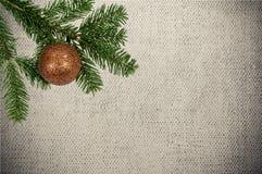 Grüne Niederlassung mit Weihnachtsball auf Segeltuchhintergrund Lizenzfreies Stockfoto
