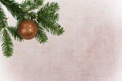 Grüne Niederlassung mit Weihnachtsball auf Segeltuchhintergrund Stockbild