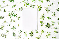 Grüne Niederlassungen und leeres Papier auf weißem Hintergrund Stockfotografie