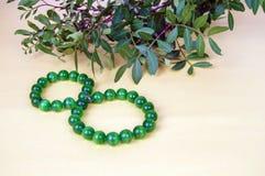 Grüne Niederlassungen von Anlagen und von Perlen in der Form einer Zahl-acht In Lizenzfreie Stockfotos
