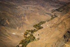 Grüne Oase, die durch Wüste sich kräuselt Stockbild