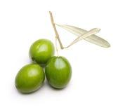 Grüne Oliven mit Blättern Lizenzfreies Stockfoto