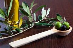 Grüne Oliven und Öl Lizenzfreies Stockbild