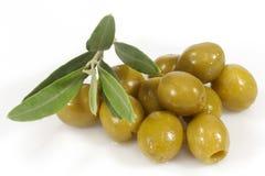 Grüne Oliven und Zweig Lizenzfreie Stockfotos