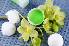 Grüne Ostern-Dekoration mit Hellebore- und Eierschalen auf einer blauen Auflage Stockbilder