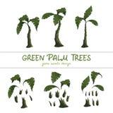 Grüne Palmen der Karikatur auf einem weißen Hintergrund vektor abbildung