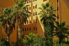 Grüne Palmen in der Stadt lizenzfreie stockfotografie