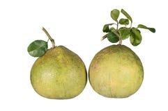 Grüne PampelmusenZitrusfrucht Lizenzfreie Stockfotos
