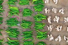 Grüne Paprikas und Ingwer Stockbild