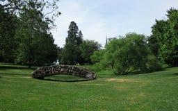 Grüne Parklandschaft Stockfotografie