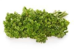 Grüne Petersilie lokalisiert auf Weiß Lizenzfreie Stockfotos