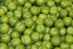Grüne Pflaumenfrucht Stockfotos