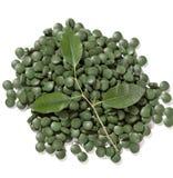 Grüne Pillen stockbilder