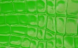 Grüne Quadrate des Hintergrundes Stockbilder