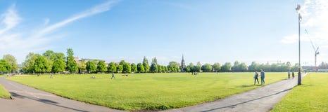 Grüne Rasenfläche in Cambridge Stockbild