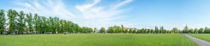 Grüne Rasenfläche in Cambridge Stockbilder