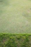 Grüne Rasenfläche des Golfplatzes Lizenzfreies Stockfoto
