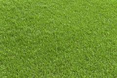 Grüne Rasenfläche, grünes lawb gut für Beschaffenheit und Hintergrund lizenzfreies stockfoto