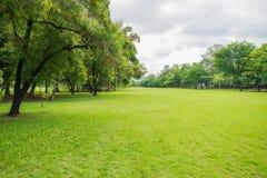 Grüne Rasenfläche im Großstadtpark Lizenzfreies Stockfoto