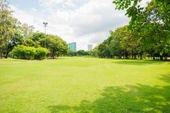 Grüne Rasenfläche im Großstadtpark Stockbild