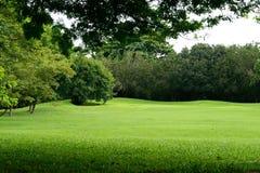 Grüne Rasenfläche im Park Lizenzfreies Stockfoto