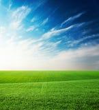 Grüne Rasenfläche und Sonnenuntergang im blauen Himmel mit Wolken Stockbilder