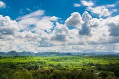 Grüne Rasenfläche-Wiese mit Holz und Berg unter blauem Himmel Lizenzfreie Stockbilder