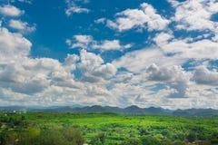 Grüne Rasenfläche-Wiese mit Holz und Berg unter blauem Himmel Stockfoto