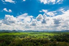 Grüne Rasenfläche-Wiese mit Holz und Berg unter blauem Himmel Stockbilder