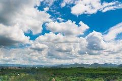 Grüne Rasenfläche-Wiese mit Holz und Berg unter blauem Himmel Stockfotos