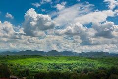 Grüne Rasenfläche-Wiese mit Holz und Berg unter blauem Himmel Lizenzfreie Stockfotos