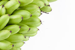 grüne rohe Eibananen oder Eibanane auf weißer Hintergrund dem gesunden Fruchtlebensmittel Pisang Mas Banana lokalisiert Stockfotografie
