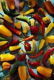 Grüne, rote, gelbe und orange Pfeffer lizenzfreie stockfotos