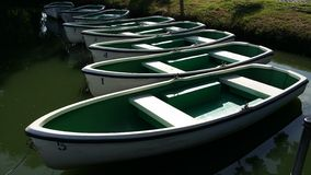 Grüne Ruderboote Stockfoto