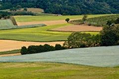 Grüne Schichten der Felder, des vineyaard, des Waldes u. der Wiese Lizenzfreie Stockfotos