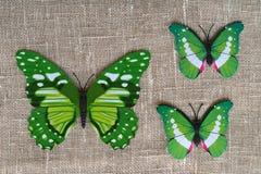 Grüne Schmetterlinge dekorativ stockbild