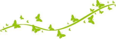Grüne Schmetterlinge für Grußkarten Stockfoto
