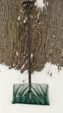 Grüne Schneeschaufel Stockfotos