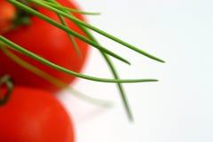 Grüne Schnittlauche über Tomaten Stockfotografie
