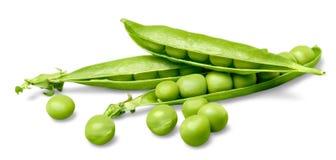 Grüne Sojabohnenölbohnen stockbilder