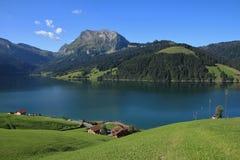 Grüne Sommerlandschaft am See Waegitalersee Stockbild