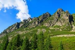 Grüne Sommerlandschaft von hohen Tatra-Bergen, Slowakei Stockbild