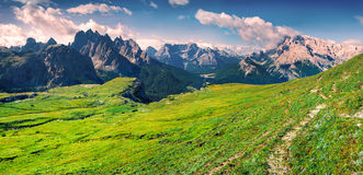 Grüne Sommerszene im Nationalpark Tre Cime di Lavaredo Stockbild