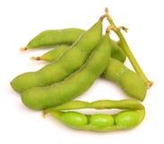 Grüne Soyabohnen Stockfoto