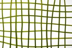 Grüne Stämme im Gitter Lizenzfreie Stockbilder