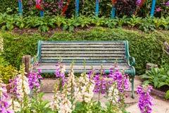 Grüne Stühle im Garten Lizenzfreies Stockbild