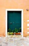 Grüne Tür des Eingangs des Altbauhauses Lizenzfreie Stockfotos