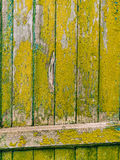 Grüne Türen Hölzerne Beschaffenheit Alte schäbige, bestrahlte Farbe Lizenzfreie Stockfotos